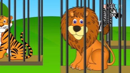 The Zoo Song -- We Are Going To The Zoo Animated Song for Kids