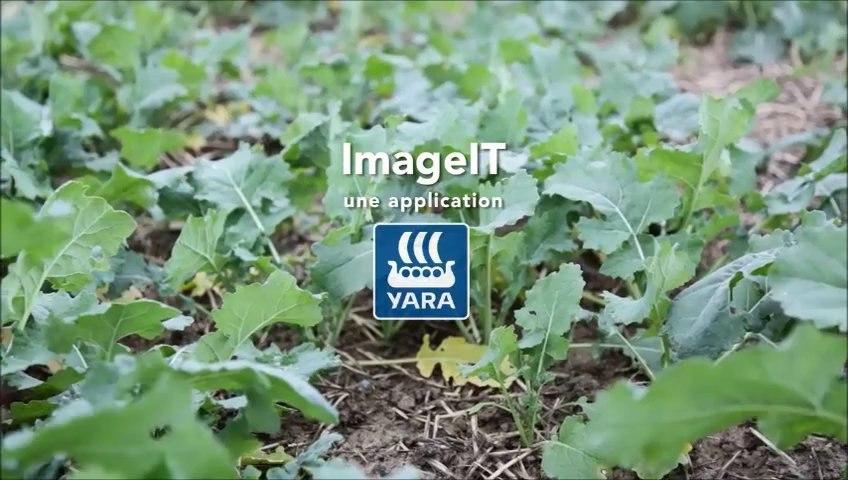 yara_imageit_temoignages