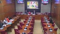 Audition de représentants syndicaux (SNES-FSU) - Jeudi 6 Février 2014