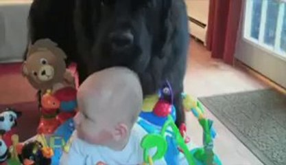 Biggest Collection Of Funny Baby Clips