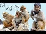 natraj behera ranji cricketer orissa  cricket team -monkey man (1)