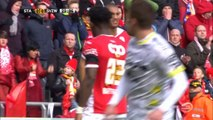 Belgian Pro League: Standard Liege 2-0 Zulte Waregem