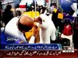Waqtnews Headlines 01:00 PM 11 February 2014