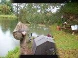 ETANGS DES CHENES - étangs de pêche en Mayenne - sans permis de pêche