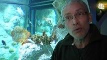 """Mare Nostrum : Vivez une mission dans une station d'exploration sous-marine avec """"Mission Odyssée"""""""