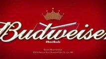 BUDWEISER SUPER BOWL XLVIII COMMERCIAL -- _PUPPY LOVE_(360P_H.264-AAC)FEV-2014