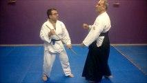 Aikido İstanbul Türkiye - Beylikdüzü Bu Do Kan Aikido Okulu - Aikikai Aikido Turkey