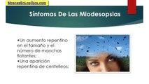Principales Causas De Las Miodesopsias: Las Miodesopsias y Cuales Son Sus Principales Causas