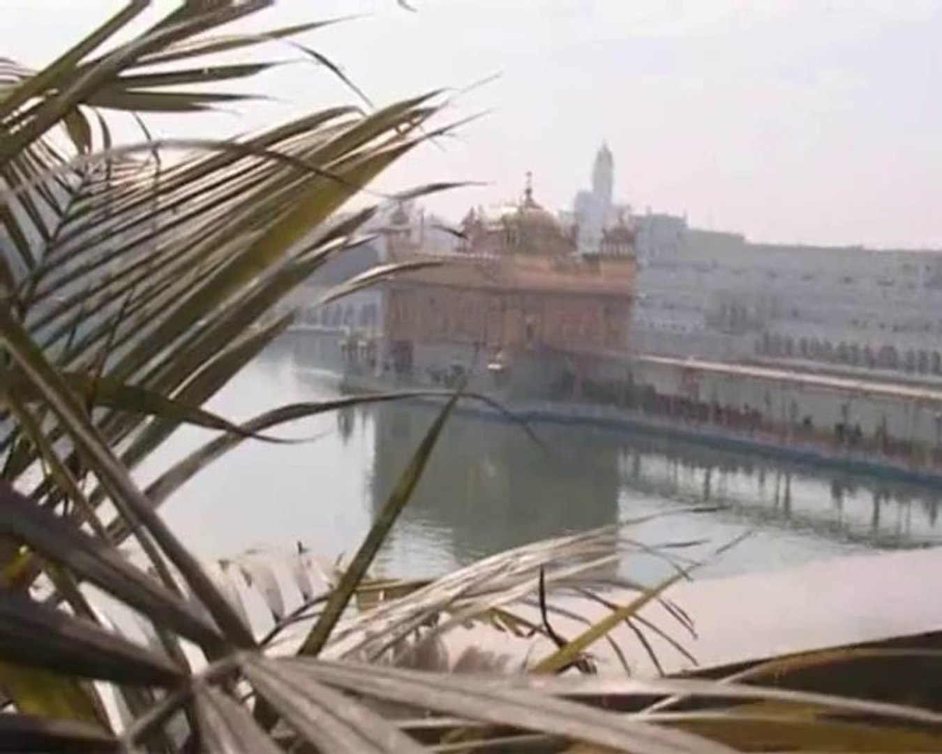 Jathedar Akal Takhat On Rahul Gandhi l Delhi Riots l Nov. 84 l Sikhs l Justice l Congress | Sharomni