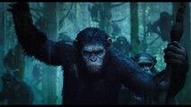 La Planète des Singes : L'Affrontement - Bande-annonce VF (2014)