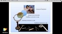 Tutoriel Flash CC : Analyser la structure des objets de l'animation Flash | video2brain.com
