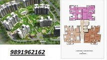 geoworks group(9891962162) 1000 trees sector-6 sohna gurgaon road