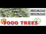 9891962162! geoworks 1000 trees sohna sector-6 gurgaon road