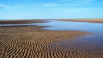 Ainsdale Sand Dunes National Nature Reserve Liverpool Merseyside
