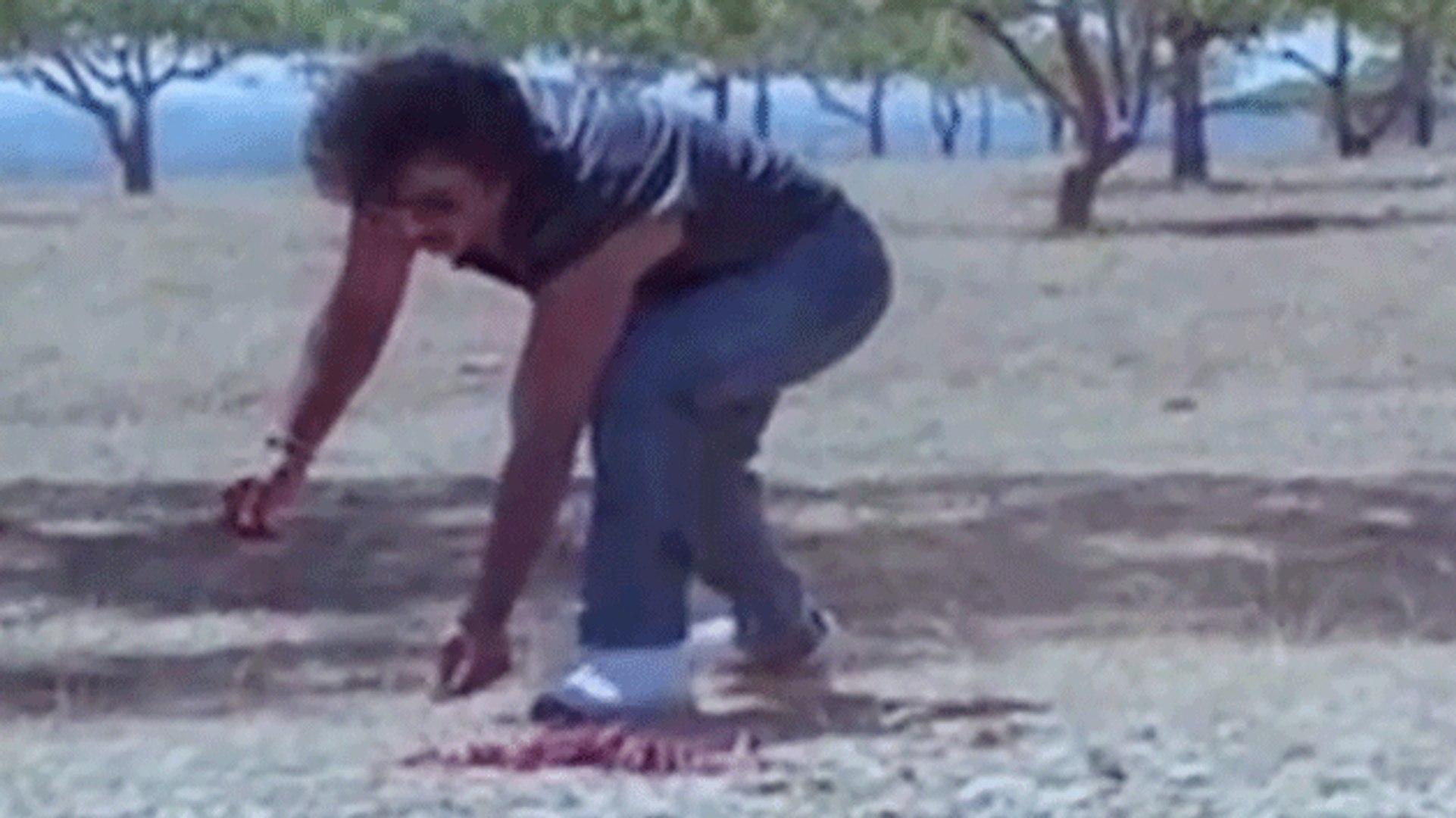 Prabhu Comedy Scene | Guru Sishyan | Tamil Film