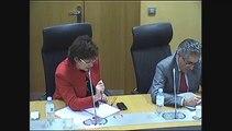 Audition de M. Vicente Gonzales Loscertales, SG du Bureau international des expositions - Mercredi 12 Février 2014