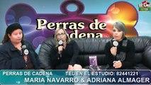 PERRAS DE CADENA 12 FEBRERO 2014