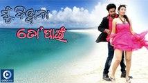 Odia Movie Mu Diwana To Pain - Title Song | Odia Film Videos | New Oriya Film