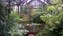 Glasgow Botanic Gardens Glasgow City of Glasgow