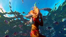 Luxushotel Strandhotel Traumurlaub  Swimming with dolphins - Le Morne peninsula, Mauritius