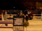 Concours de Saut - Salon du cheval