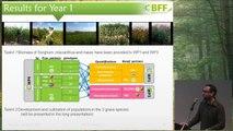 Réunion annuelle 21.11.2013 - WP4 : Génétique et génomique comparative de la qualité et de la quantité de biomasse produite chez les graminées