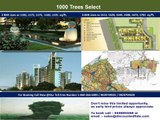Buy Affordable flats in 1000 Trees Select @ Sector 6 Gurgaon Call 9028704501