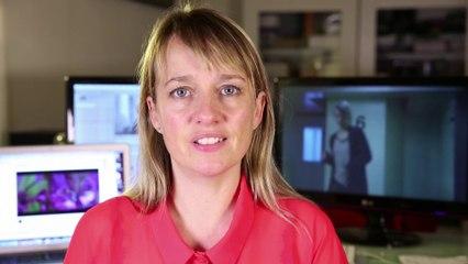 STEM - Indiegogo short film campaign video
