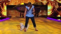 America's Got Talent 2013 - Season 8 - 008 - Kelsey & Bailey - Dog Dances to Hot n Cold