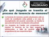 Estudio Juridico valeriano - Tenencia de Menores - Abogados - Derecho Familiar - Lima