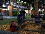 Salon de l'agriculture: ce que les agriculteurs attendent de François Hollande - 21/02