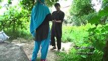 Ahmad Naseer Sakhi - Ham Deyar (New Afghan song 2013 HD)