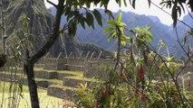 Pérou: Machu Picchu