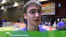 SIA 2014 : Hugo et Arnaud, concurrents aux ovinpiades