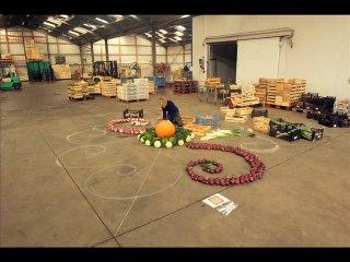 Mandala de légumes géant au GAEC des Etangs