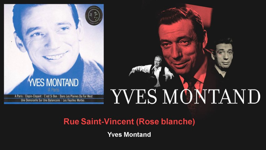 Yves Montand - Rue Saint-Vincent - Rose blanche