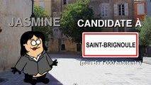 L'élection d'un maire dans une ville de plus de 1000 habitants (expliquée en patates)