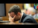 Oscar Pistorius trial: friend said Pistorius asked him to take the blame for shooting