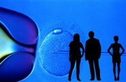 FDA Concerned About Embryos With Genetic Material Of Three Parents