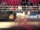 salon du cheval de paris 2006