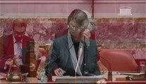 Michèle Bonneton - Question orale à Mme la Ministre de l'artisanat, du commerce et des TPE, Sylvia Pinel - 25 février 2014