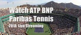 watch BNP Paribas Tennis 2014 tennis mens final live online
