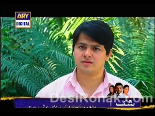 Sheher e Yaaran - Episode 88 - March 6, 2014 - Part 2