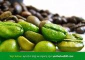 Yeşil Kahve Aktar