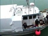 Avec le soleil, les pêcheurs retournent enfin en mer - 10/03