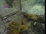 clip bspp 2002