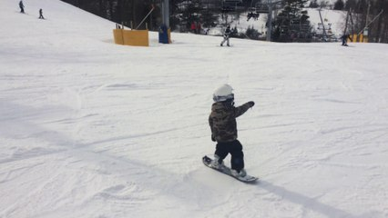 My little shred