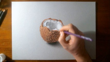 Hyperrealistic speed drawing of a Coconut