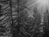 Sport d'hiver en Mars : Neige et Soleil dans les stations de ski