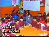 AliZaib Commercial British Academy School